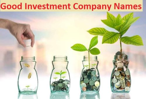 50+ Catchy Investment Company Names Ideas
