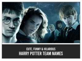 Harry-Potter-Team-Names