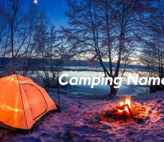 Camping Name Ideas