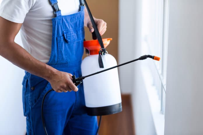 The Need for Pest Control Professionals